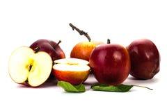苹果背景照片系列白色 免版税库存图片