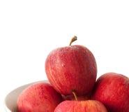 苹果背景碗白色 免版税库存照片