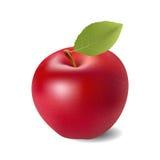 苹果背景红色白色 免版税库存图片