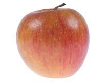 苹果背景红色白色 免版税图库摄影