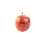 苹果背景红色白色 库存照片