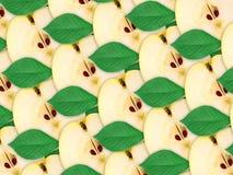 苹果背景绿色叶子片式 图库摄影