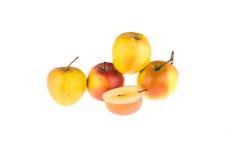 苹果背景食物查出的材料使用白色 食物 免版税图库摄影