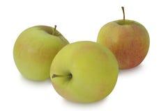 苹果背景食物查出的材料使用白色 库存图片