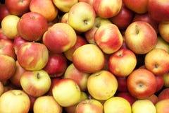 苹果背景食物系列 库存照片