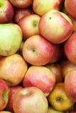 苹果背景食物系列 免版税图库摄影