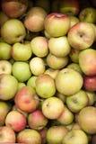 苹果背景食物系列 免版税库存图片