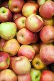 苹果背景食物系列 库存图片