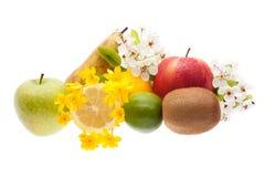 苹果背景香蕉果子芒果柑橘集合白色 库存图片
