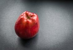 苹果背景黑暗查出的红色白色 免版税库存图片