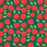 苹果背景 免版税图库摄影