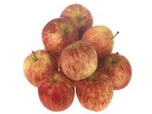 苹果节目 库存图片