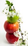 苹果花绿色红色 免版税图库摄影