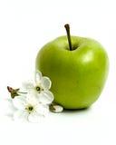苹果花绿色 库存图片