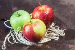 苹果苹果背景森林果子组水多的红色成熟小的三白色 库存图片