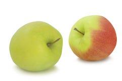 苹果苹果重点查出的背景设置了二白色您 免版税图库摄影