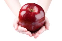 苹果藏品 库存图片