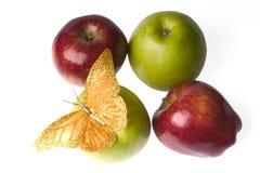 苹果蝴蝶 免版税库存图片