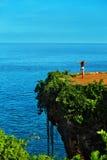 苹果覆盖花横向草甸本质星期日结构树 热带峭壁的,在海岛上的海岩石妇女 免版税库存照片