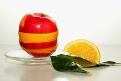苹果计算机、橙色切片和绿色叶子 免版税库存照片