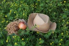 苹果计算机和帽子在花草 免版税图库摄影