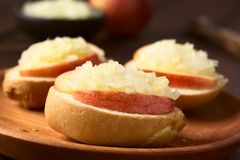 苹果计算机和德国泡菜三明治 免版税库存图片