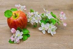 苹果计算机和花在木背景 图库摄影
