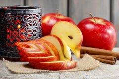 苹果计算机天鹅。装饰由新鲜水果制成。 免版税库存照片