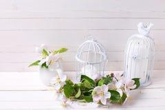 苹果计算机开花和蜡烛在装饰鸟笼在白色痛苦 免版税库存照片