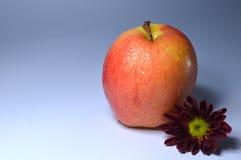 苹果计算机果子,油炸马铃薯片,可口,果子。自然。 免版税图库摄影