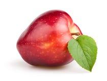 苹果计算机红色一叶子 库存照片