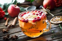 苹果计算机蔓越桔茶用桂香、柠檬和麝香草在玻璃杯子 饮料热冬天 库存图片