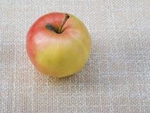 苹果计算机 图库摄影