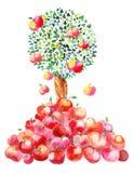 苹果跌倒 向量例证