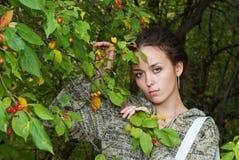 苹果通配女孩的结构树 免版税库存照片