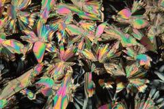 苹果酸在显微镜下 免版税库存照片
