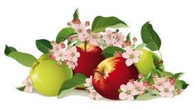 苹果静物画与花的 免版税库存图片