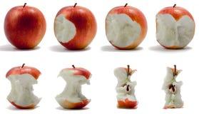 苹果顺序 免版税图库摄影