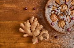 苹果饼片断用蔓越桔和核桃装饰用姜 搽粉的苹果饼立即可食与姜大片断  免版税库存图片