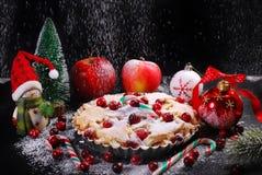 苹果饼用圣诞节的蔓越桔在冬天风景 免版税库存图片