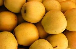 苹果黄色 免版税库存照片