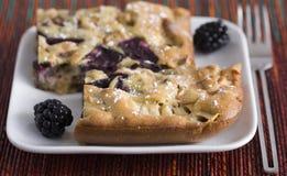 苹果黑莓饼 库存照片
