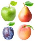 从苹果,梨,在白色背景隔绝的李子桃子设置 免版税库存照片