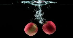 苹果,罗盘星座domestica,结果实输入的水反对黑背景, 影视素材