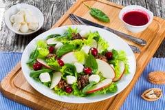 苹果,菠菜,无盐干酪,莴苣叶子沙拉,变成焦糖 免版税库存图片