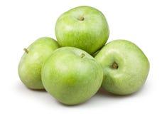 苹果绿的小组 图库摄影