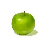 苹果绿的影子 图库摄影