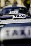 茂盛的出租汽车 免版税库存照片
