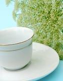 范围瓷杯子金茶碟 库存图片