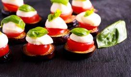茄子、蕃茄和无盐干酪开胃菜 库存照片